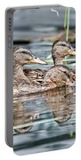 Swimming Quacks Portable Battery Charger