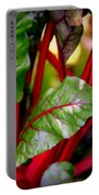 Swiss Chard Forest Portable Battery Charger by Karen Wiles