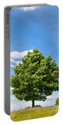 Sycamore  Acer Pseudoplatanus Portable Battery Charger