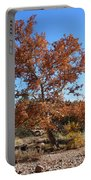 Sycamore Tree In Fall Colors Portable Battery Charger