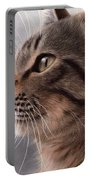 Tabby Cat Painting Portable Battery Charger