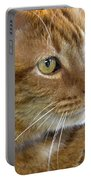 Tabby Cat Portrait Portable Battery Charger