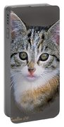 Tabby  Kitten An Original Painting For Sale Portable Battery Charger