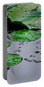 Tadpole Haven Portable Battery Charger by Frozen in Time Fine Art Photography