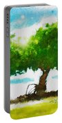 Summer Magic Portable Battery Charger