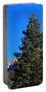 Tahquitz Rock - Lily Rock Portable Battery Charger