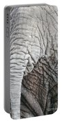 Tail Of African Elephant Portable Battery Charger
