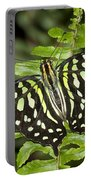 Tailed Jay Portable Battery Charger