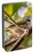 Tailor Bird Portable Battery Charger