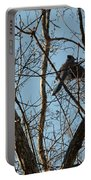 Takeoff - Bluejay Portable Battery Charger