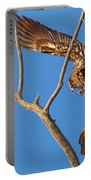 Taking Flight - Immature Bald Eagle Portable Battery Charger