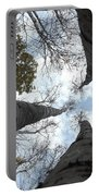 Tall Birches Portable Battery Charger