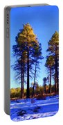 Tall Ponderosa Pine Portable Battery Charger