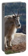 Tall Tales Portable Battery Charger