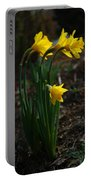 Taller Daffs Portable Battery Charger
