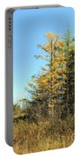 Tamarak Gold Portable Battery Charger