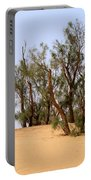 Tamarix Trees On Sand Dune  Portable Battery Charger by Dan Yeger