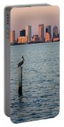 Tampa Skyline And Pelican Portable Battery Charger