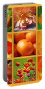 Tangerine Dream Window Portable Battery Charger