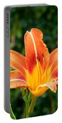 Tangerine Lily Portable Battery Charger