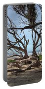 Tangle Of California Trees Portable Battery Charger