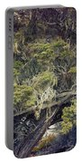 Tangled Neighbors Of The Lone Cypress Portable Battery Charger