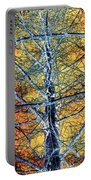 Tangled Web 2 Portable Battery Charger
