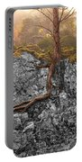 Taproot Portable Battery Charger