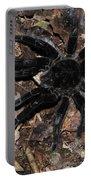 Tarantula Amazon Brazil Portable Battery Charger