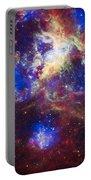 Tarantula Nebula 2 Portable Battery Charger
