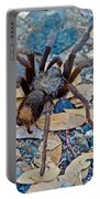 Tarantula Spider In Park Sierra Near Coarsegold-california Portable Battery Charger