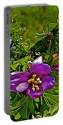 Tarbush In Chihuahuan Desert Of Big Bend National Park-texas   Portable Battery Charger