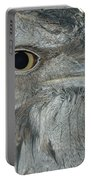 Tawny Frogmouth Portable Battery Charger