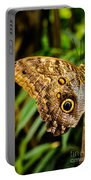 Tawny Owl Butterfly Portable Battery Charger