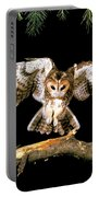 Tawny Owl Portable Battery Charger