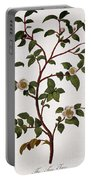Tea Branch Of Camellia Sinensis Portable Battery Charger