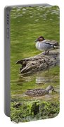 Teal Family Gathering Portable Battery Charger