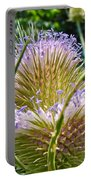 Teasel Thistle - Dipsacus Fullonum  Portable Battery Charger