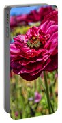 Tecolote Ranunculus Flowers By Diana Sainz Portable Battery Charger