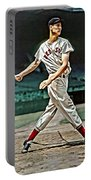 Ted Williams Painting Portable Battery Charger