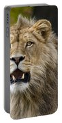 Teenage King Of The Beast Portable Battery Charger