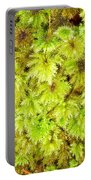 Tender Fresh Green Moss Background Texture Pattern Portable Battery Charger