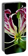 Tendrils Of My Mind Portable Battery Charger