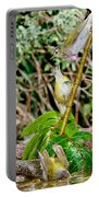 Tennessee Warblers Portable Battery Charger