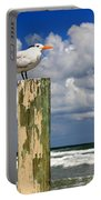 Tern On A Piling Portable Battery Charger