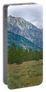 Tetons Above The Meadow In Grand Teton National Park-wyoming Portable Battery Charger
