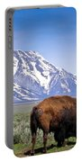 Tetons Buffalo Range Portable Battery Charger