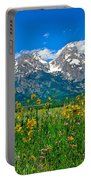 Tetons Peaks And Flowers Center Panel Portable Battery Charger