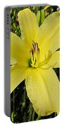 Tetrina's Daughter Daylily Portable Battery Charger