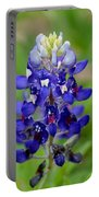 Texas Bluebonnets Portable Battery Charger
